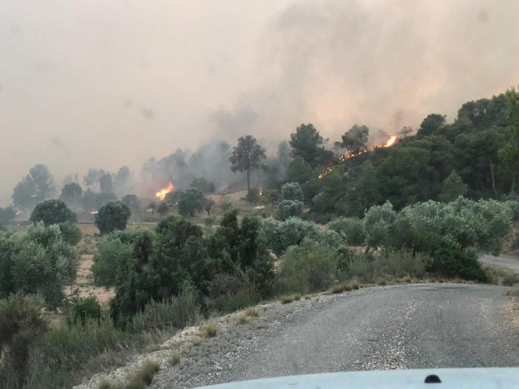 Controlan incendio que consumió 6 mil hectáreas en Cataluña