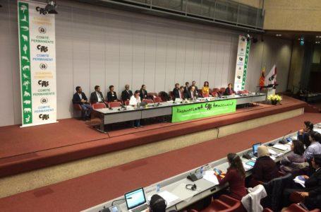 Especies amenazadas tendrán su defensa en Ginebra / Foto: Cortesía