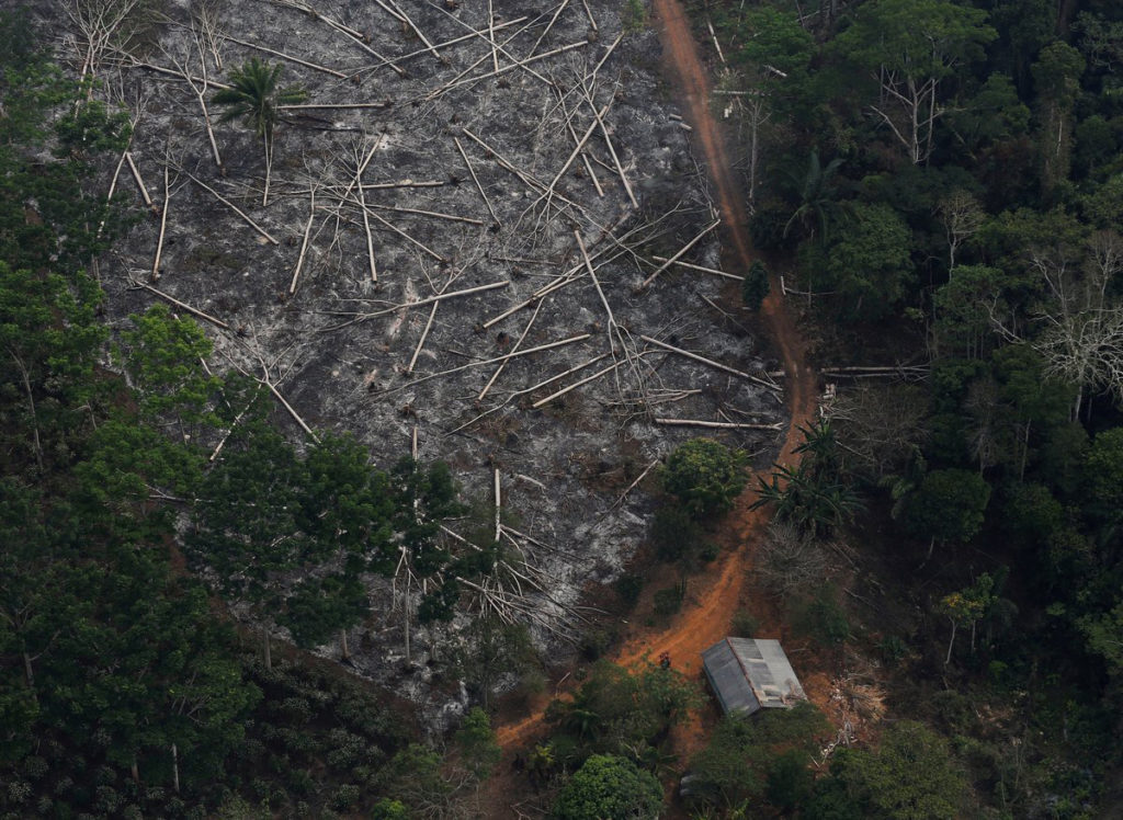 Jair Bolsonaro refuerza la devastación de la Amazonía brasileña