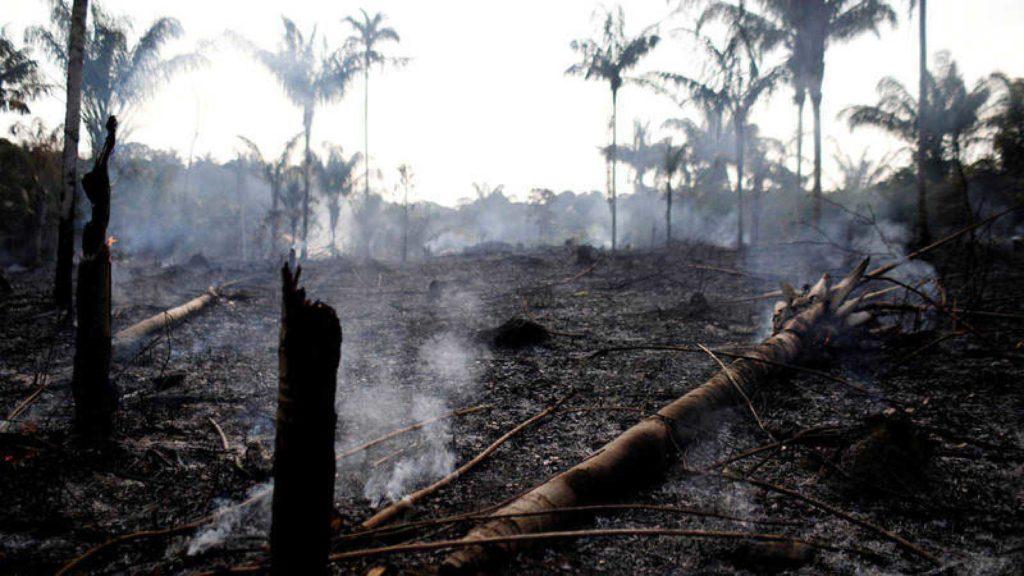 Incendios en la Amazonía podrían desatar un boicot contra Brasil