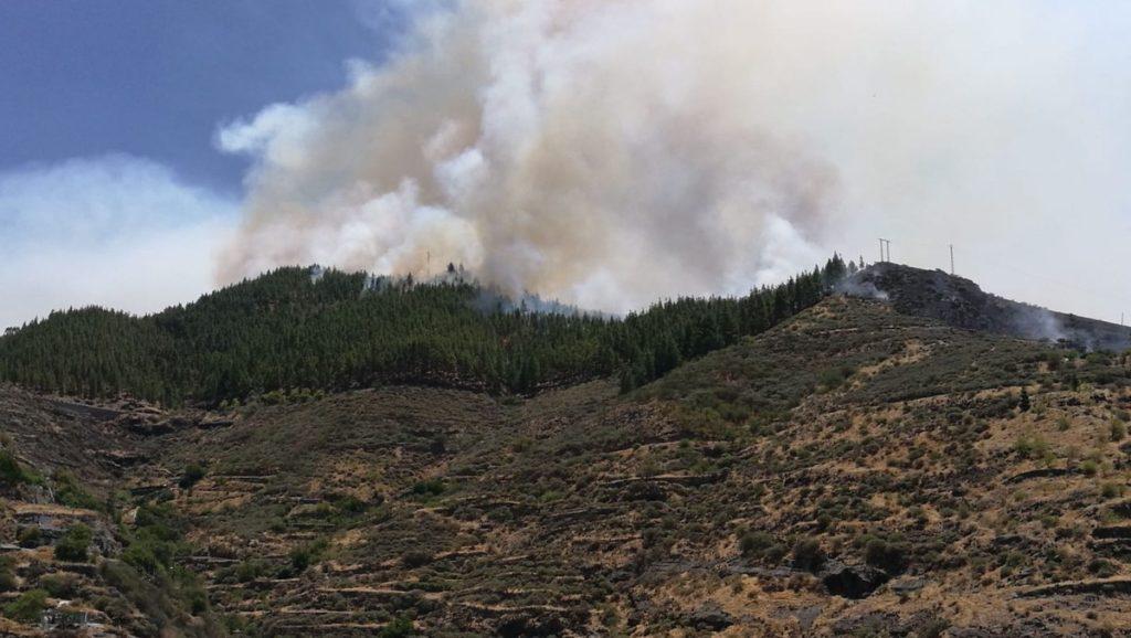 Las llamas consumen los bosques de la Gran Canaria