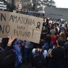 Progresistas encaran a Bolsonaro por devastación de la Amazonia