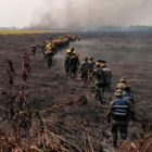 Bolivia se apresta a reforestar áreas incendiadas de la Amazonía