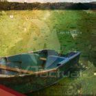 Alerta ambiental se intensifica en el lago de Valencia