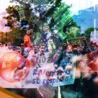 Arremetidas sistemáticas «Made in Colombia»: Desde Bolívar hasta Daktari