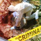 El narcotráfico sigue sembrando muerte en México
