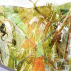 Gobierno de Colombia busca manchar a disidentes de las FARC