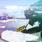 Persisten daños nucleares de EE. UU. en la Antártida