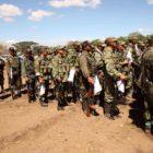 ONU: FARC ha experimentado cinco decenas de bajas este año