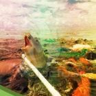 La mancha de basura devora al Pacífico