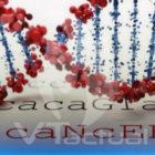 Buscan atacar al cáncer desde la genética