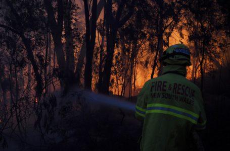 Incendios forestales prenden las alarmas en el este australiano / Foto. Cortesía