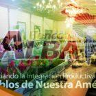 El Banco del Alba: un ejemplo de Resistencia