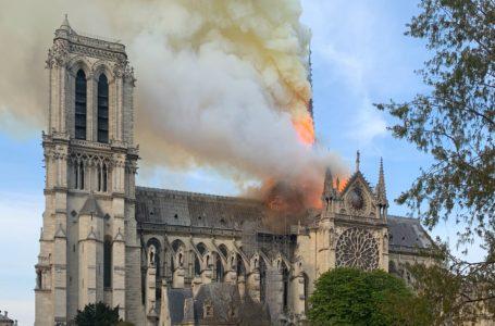 La costosa reparación de Notre Dame daría fruto en cinco años / Foto: Cortesía
