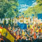 Crisis política en el Reino: crónica de un año y medio sin gobierno en España