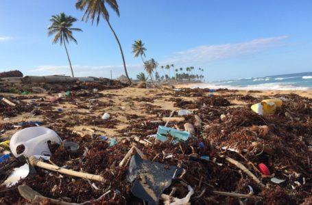 El Caribe se declara contra los plásticos de un solo uso / Foto: Cortesía