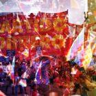 Izquierda boliviana se reagrupa para contragolpe electoral