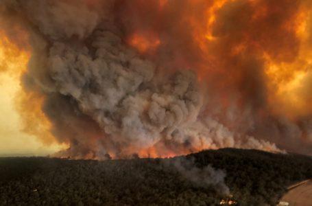 Sureste de Australia se enfrenta a su segundo megaincendio / Foto: Cortesía
