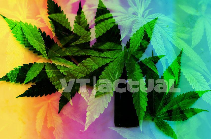 #VTanálisis La OMS apoya el uso de una droga, ¿medicina o negocio?