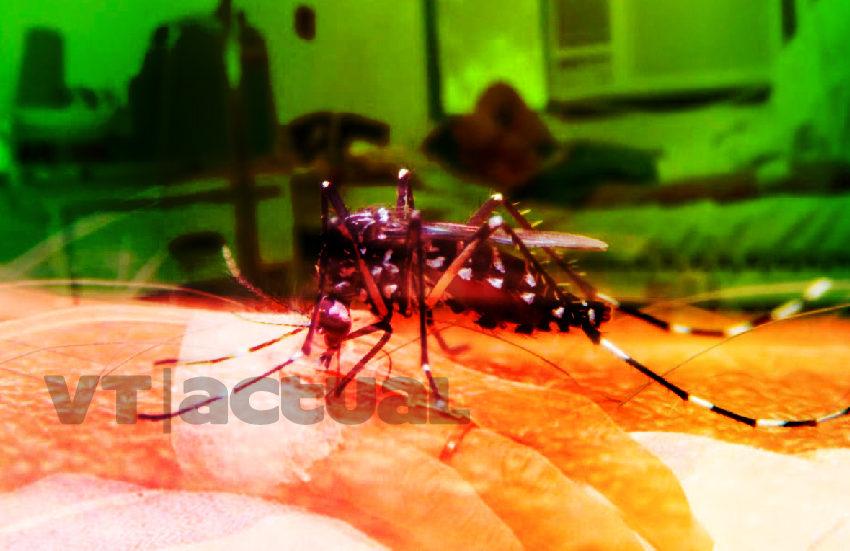 Dengue repunta en Latinoamérica mientras el Coronavirus roba la atención