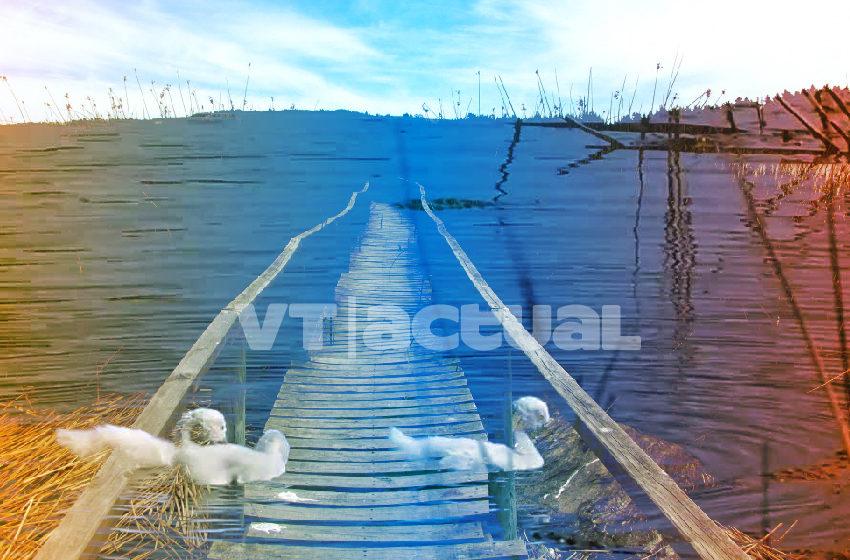 #VainaVerdeVT Sequía en Laguna Torca: la punta de un iceberg que amenaza a Chile