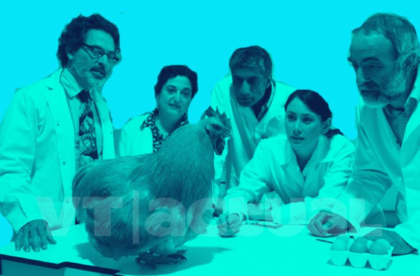 #VTanálisis Covid-19 presenta dilema del huevo y la gallina