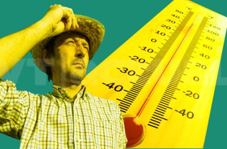Se extreman los golpes de calor en el planeta y podrían empeorar en las próximas décadas / Foto: VTactual