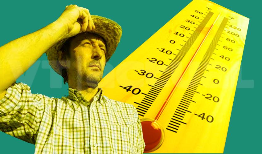Se extreman los golpes de calor y podrían empeorar en las próximas décadas