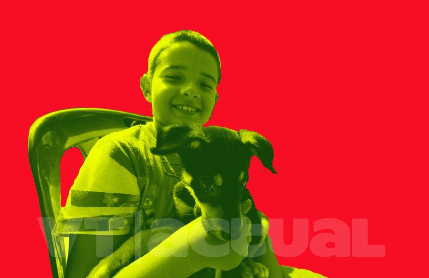 #VTMascotas Así se ayuda en Venezuela a las personas que regresan al país con sus animales