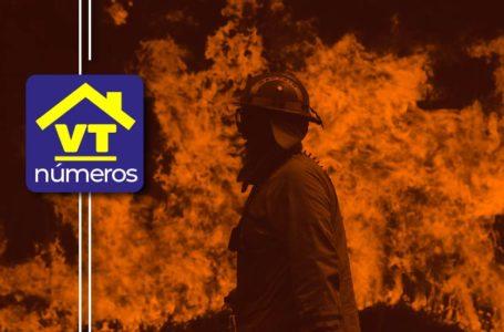 #VTnúmeros 2020: año del miedo y siete plagas mundiales
