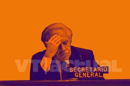 Nueva investigación del NYT reitera el fraude de la OEA en Bolivia / Foto: VTactual