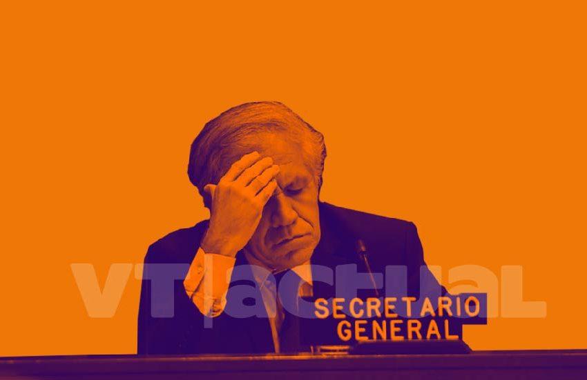 Nueva investigación del NYT reitera el fraude de la OEA en Bolivia