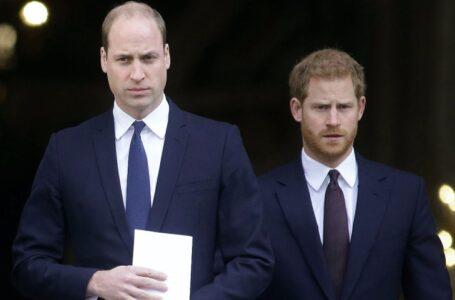 El príncipe Harry cuestionó la «preocupación» del príncipe William por Meghan Markle antes de casarse
