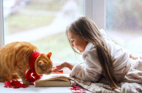 Las 10 mejores razas de gatos para niños
