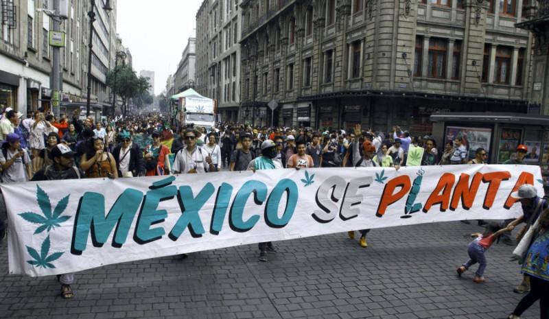 marihuana en México