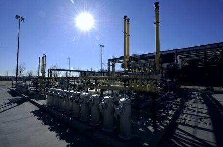El gobierno mexicano protege sus ingresos petroleros con estrategias de contratos.