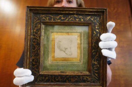 Un dibujo de Leonardo da Vinci se subasta por 12 millones de dólares en Londres