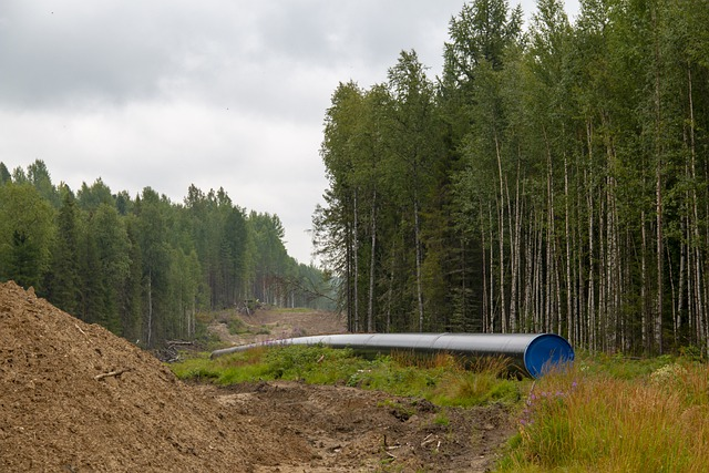 La Cámara de Representantes de EE.UU. tramita un proyecto de ley para continuar con las sanciones del Nord Stream 2