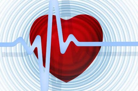 Rutinas saludables: tiendas y profesionales con los que forjar nuestra calidad de vida