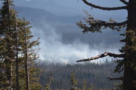 La contaminación de los incendios forestales de la costa oeste se mide en Nueva York y Boston