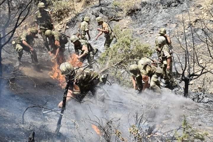 Argelia atribuye los incendios forestales a un incendio provocado, el número de muertos se eleva a 24